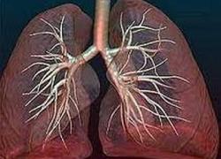 Прикорневая пневмония и ее диагностика.