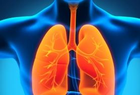 Заболевания-предшественники рецидива пневмонии.